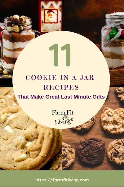 11 Best Cookie in a Jar Recipe Book