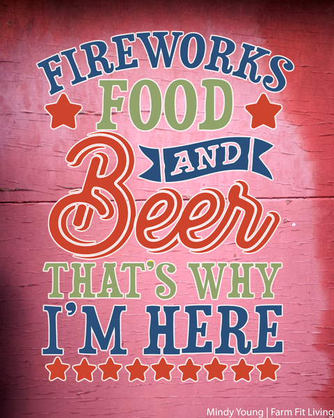 Fireworks, Food and Beer Barnwood Farmhouse Decor Wall Hanging
