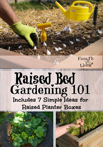7 Raised Bed Garden Ideas for You