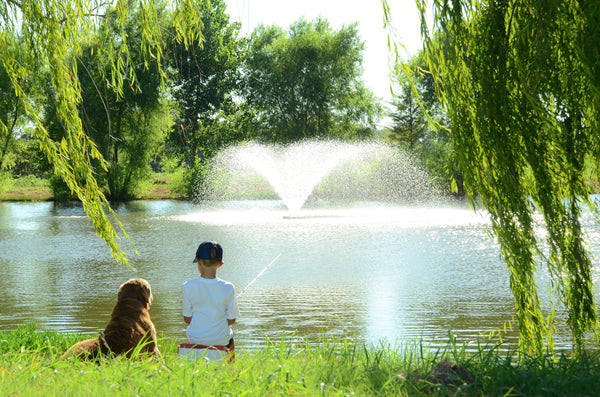 Boy fishing in pond with Dog