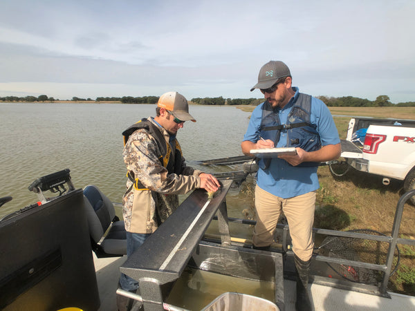 Pond King Fisheries Biologist Creating an Electrofishing Report