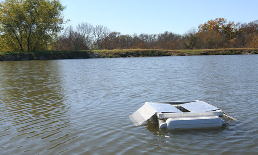 A Set Floating Turtle Trap on a Pond