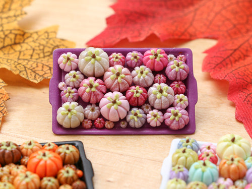 Pumpkin Tray I - Pinks 2 - OOAK Miniature Food for Autumn