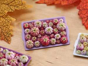 Pumpkin Tray A - Shades of Pink - OOAK Miniature Food for Autumn