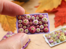 Load image into Gallery viewer, Pumpkin Tray A - Shades of Pink - OOAK Miniature Food for Autumn