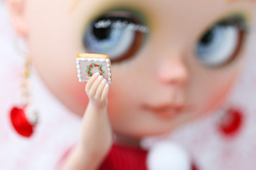 NOËL Cookies, Handpiped - Large 12th Scale - Suitable for Blythe, Barbie, Pullip, American Girl Doll (AGD), Playscale, 1/6