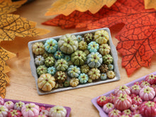 Load image into Gallery viewer, Pumpkin Tray G - Pretty Greens - OOAK Miniature Food for Autumn