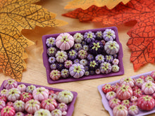 Load image into Gallery viewer, Pumpkin Tray H - Purples - OOAK Miniature Food for Autumn