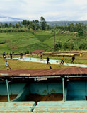 Scenic image of the Baragwu Farmers Cooperative Society.