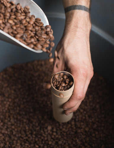 Close-up shot of someone pouring coffee beans into a sampler tube.