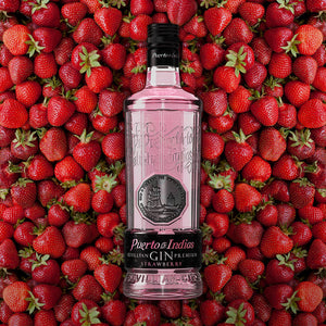 Puerto de Indias Strawberry Gin, 0,7l