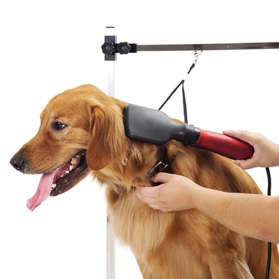 Professional Non-Slip Pet Grooming Table Heavy Duty Bathing Trimming Station