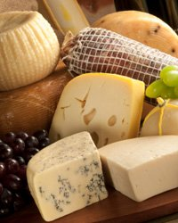 Say Cheese, Please: Understanding the Basics, Part Two