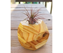 Load image into Gallery viewer, Air Plant Planter