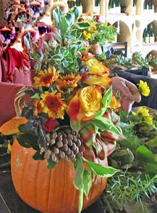Oct. 22nd Fresh Flower Pumpkin Centerpiece Class at LILY AND ROSE FLORAL STUDIO