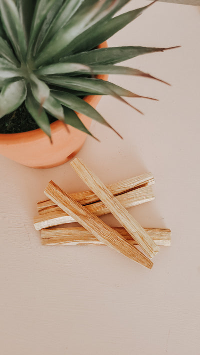 Palo Santo - Bundle of 5