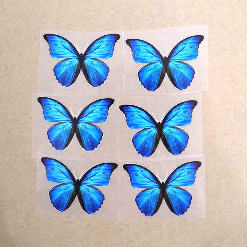 Blue Butterfly Iron On Shoe Decal