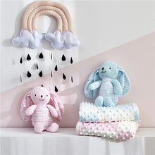 Load image into Gallery viewer, 2pcs/set Baby stuffed animal toy soothe blanket
