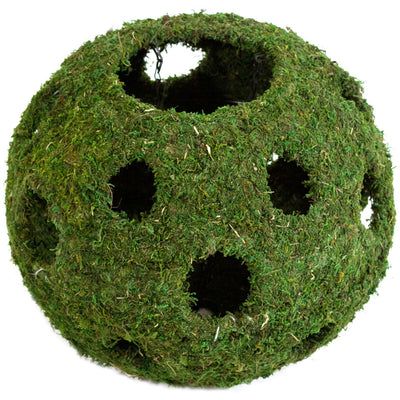 Reptile Mossy Cave with Holes by Galapagos (12 Inches)