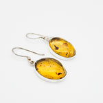 Oval Amber Earrings, Margaret