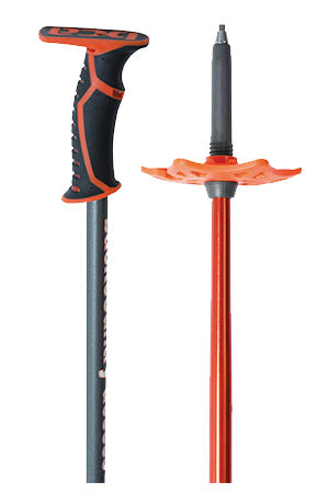 products/bca-scepter-pole-carbon-features-300x450.png