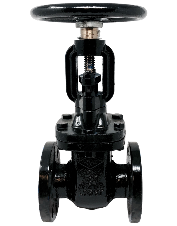 272-CI-125 CLASS 125 CAST IRON OS&Y GATE VALVE FLANGED ENDS BOLTED BONNET BRONZE TRIM