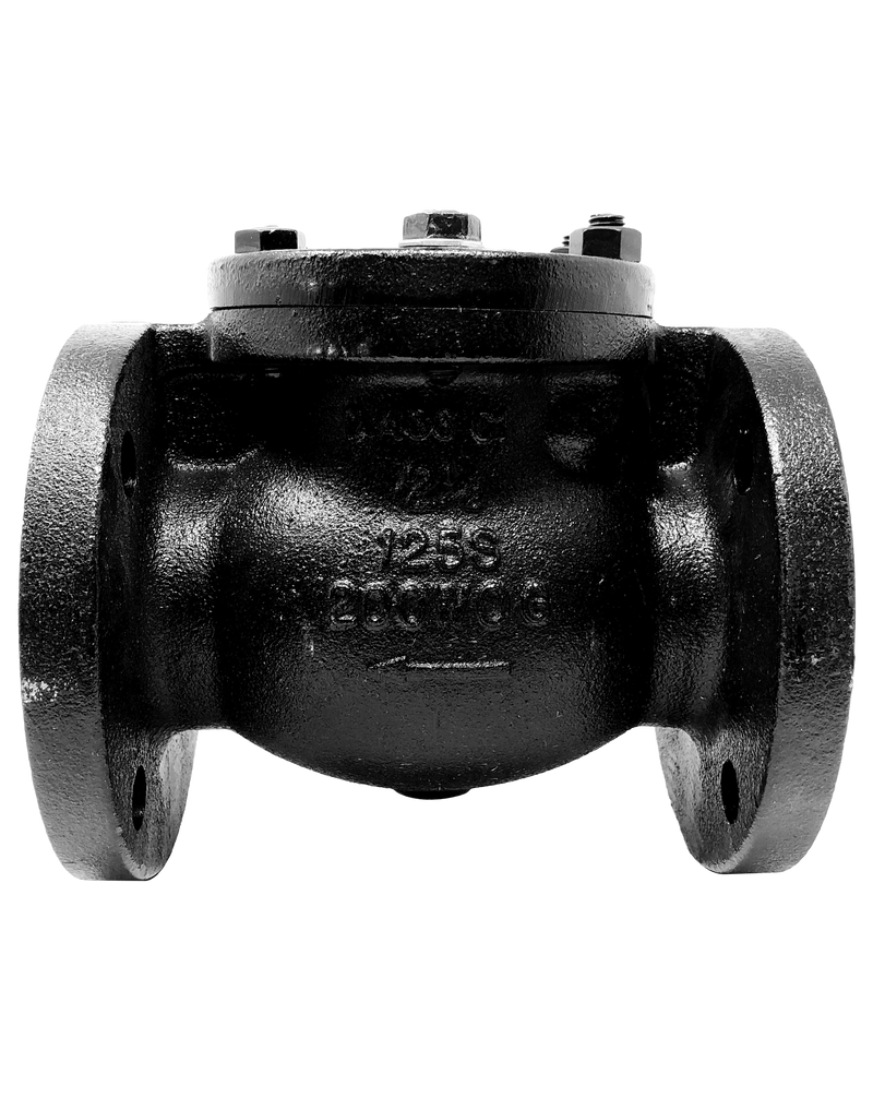 278-CI-125 CLASS 125 CAST IRON SWING CHECK VALVE FLANGED ENDS BOLTED COVER BRONZE TRIM