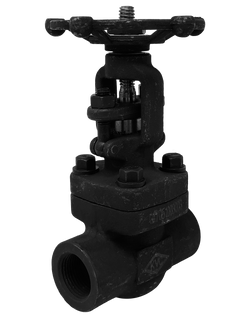 FG-801T(S) CLASS 800 FORGED STEEL GATE VALVE THREADED(SOCKET WELD) ENDS BOLTED BONNET