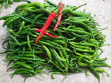 "Cayenne Chilli Pepper, Long Pepper & Very Hot, 100% Organic ""HEIRLOOM"" Seeds: 30+, Grown in USA - Eagle Art"