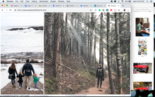 Load image into Gallery viewer, Social Media Content