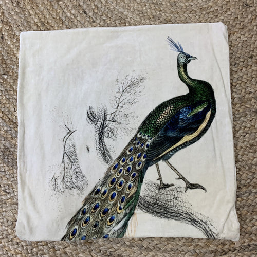 Peacock Cushion 45x45