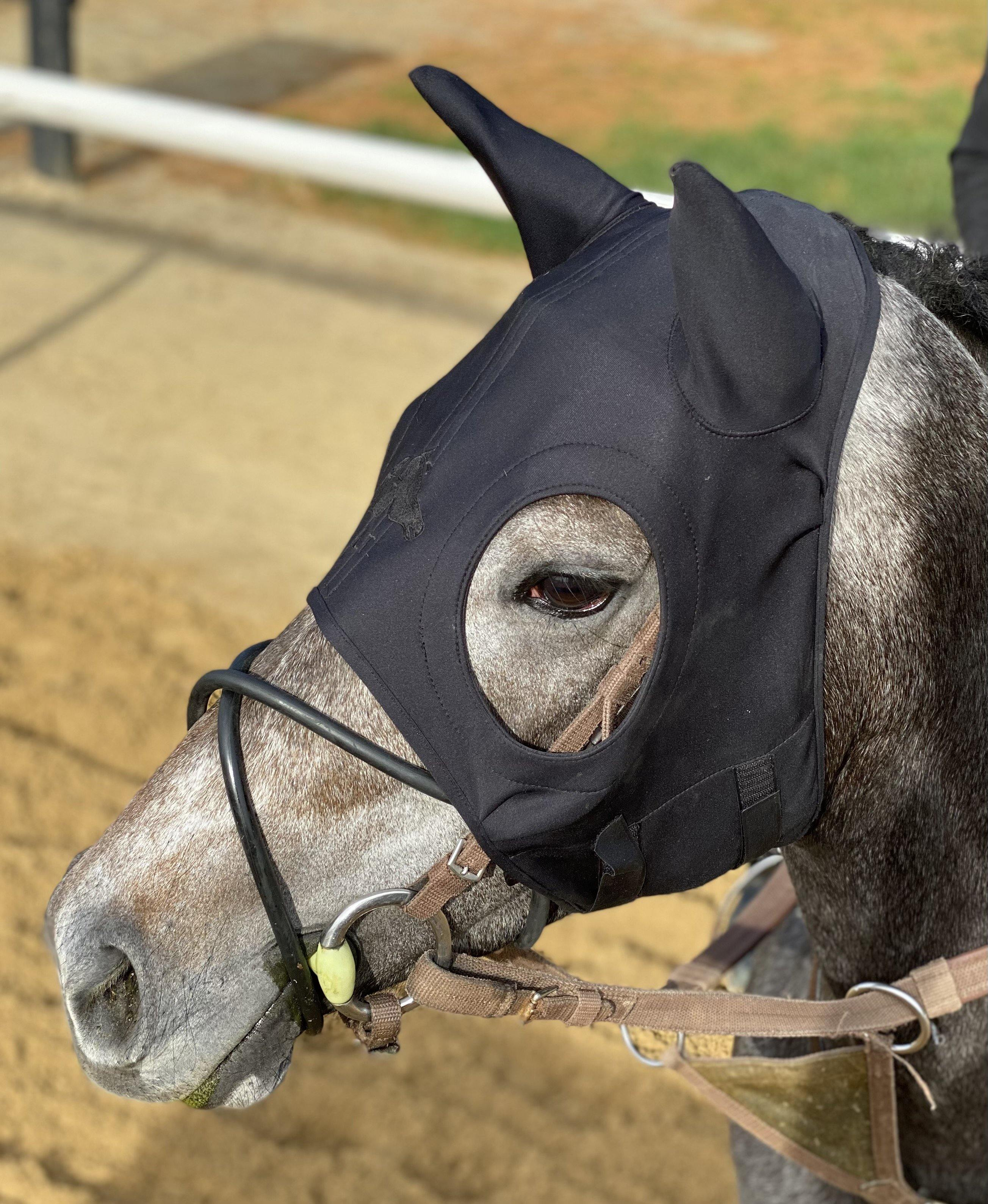 Liquid Titanium® Mask with Ears - Fenwick Equestrian