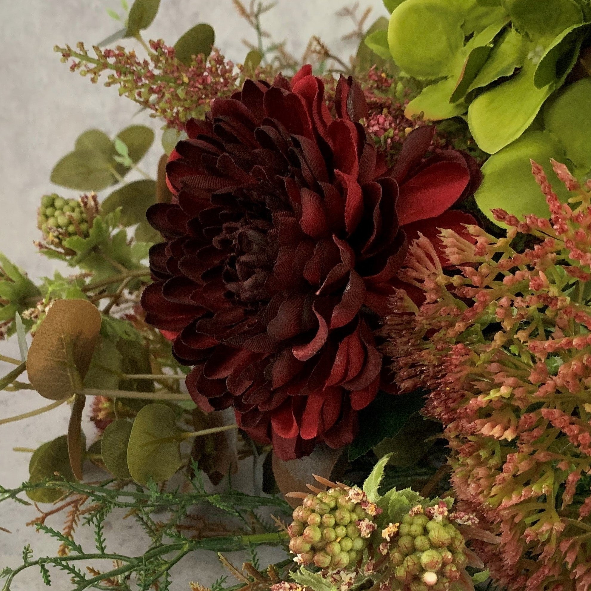 Deep Red Chrysanthemum