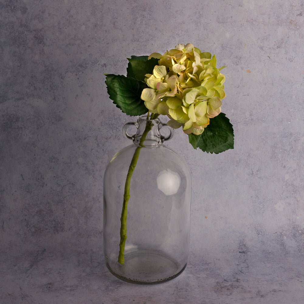 Light Green Hydrangea