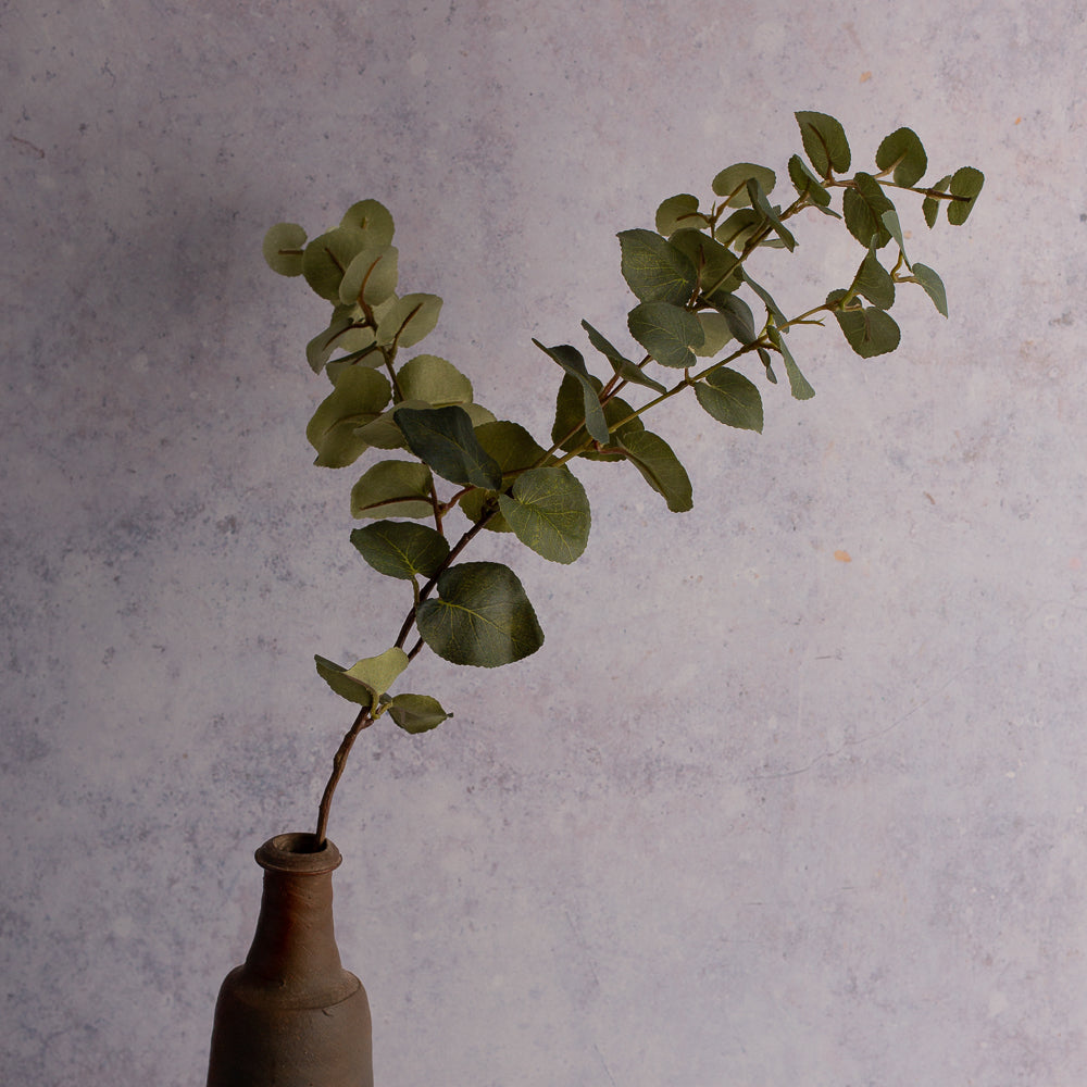 Dark Green Eucalyptus