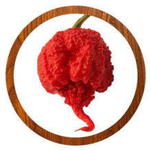 Laden Sie das Bild in den Galerie-Viewer, Carolina Reaper Schote