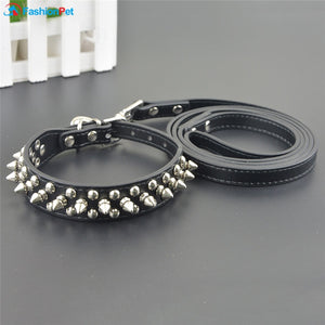 Leather Pet Dog Collar and Leash Set