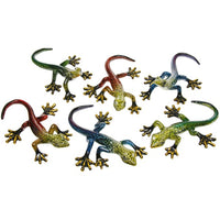 Rainbow Geckos Small
