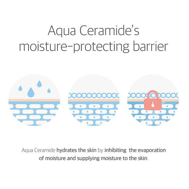aqua ceramic's moisture-protecting barrier
