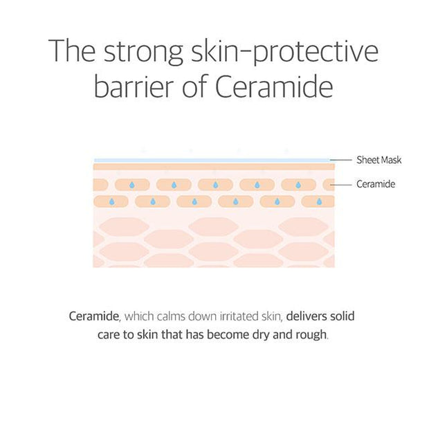 the strong skin-protective barrier of ceramide