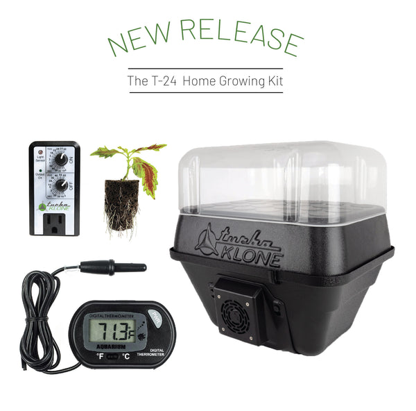 T24 Home Growing Kit