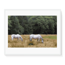 Load image into Gallery viewer, Horses in Field Limited Edition Print