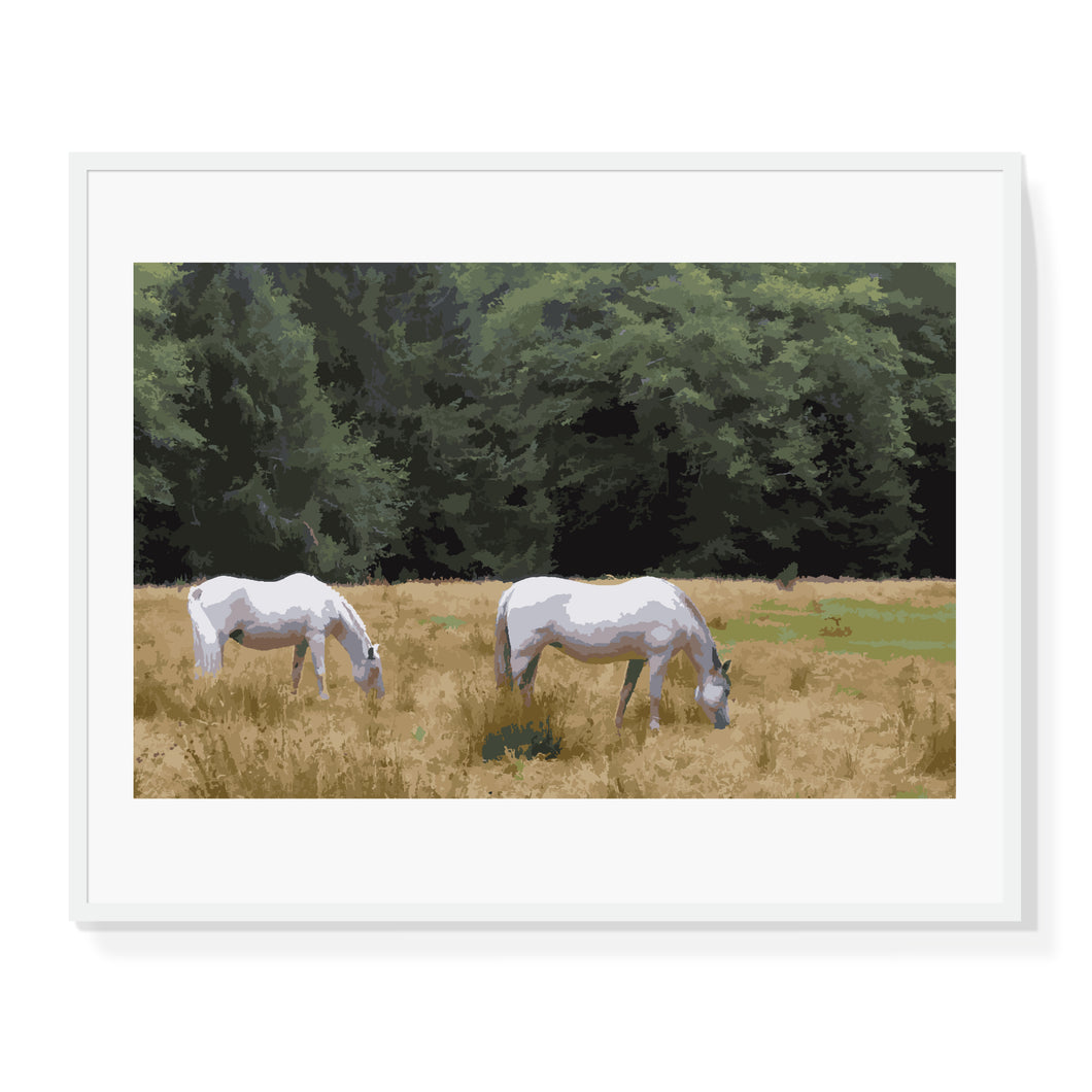 Horses in Field Limited Edition Print
