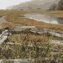 Load image into Gallery viewer, KVI Driftwood Limited Edition Print