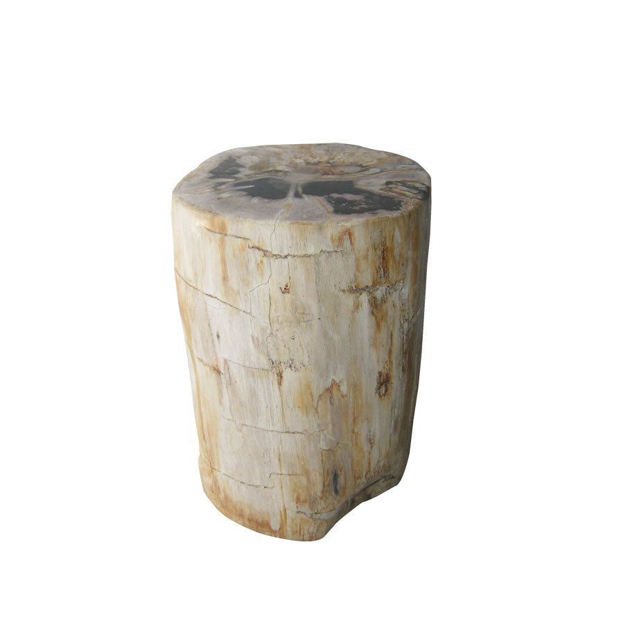 Petrified Stool