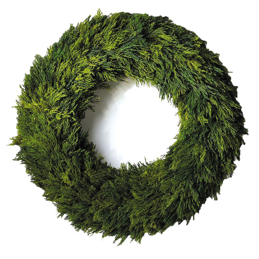 Wreath Cypress 23.5""