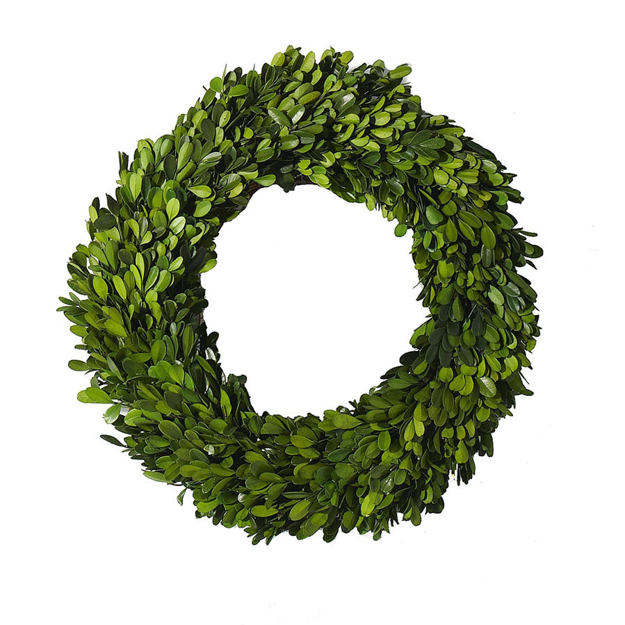 Wreath Boxwood Circle 24""
