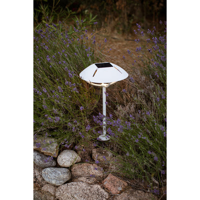 Lamp with Stake - White