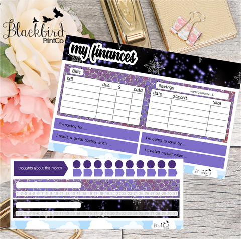 Finance Tracking Note Page Kit for Erin Condren Life Planners - Hand Drawn Planner Stickers