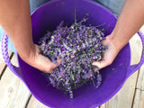 Face Cream - Lavender & Ylang-Ylang - Alpenglow Skin Care